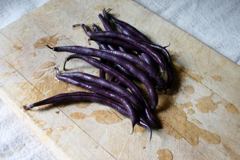 Garden Beans--Magical colors