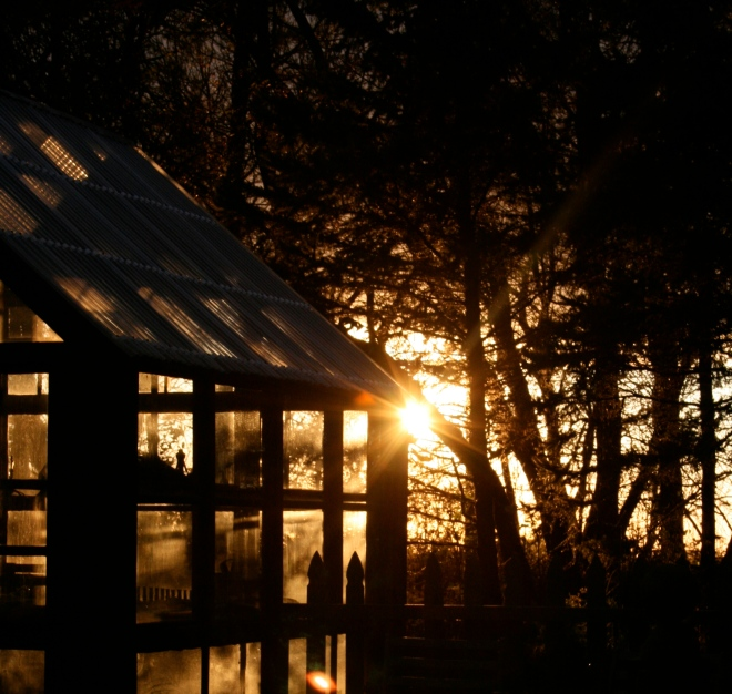 Sunsets on the greenhouse