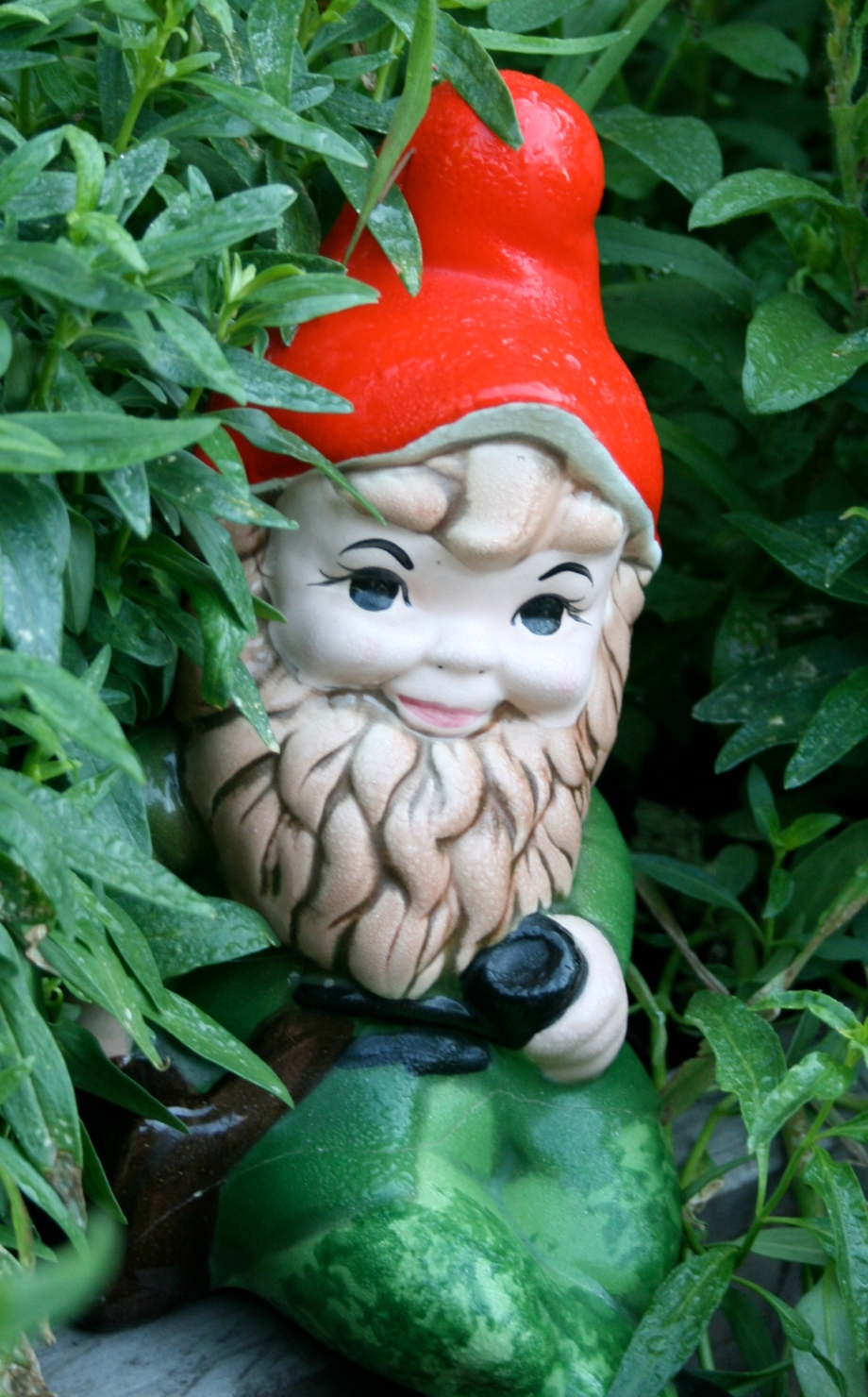 This Old Gnome