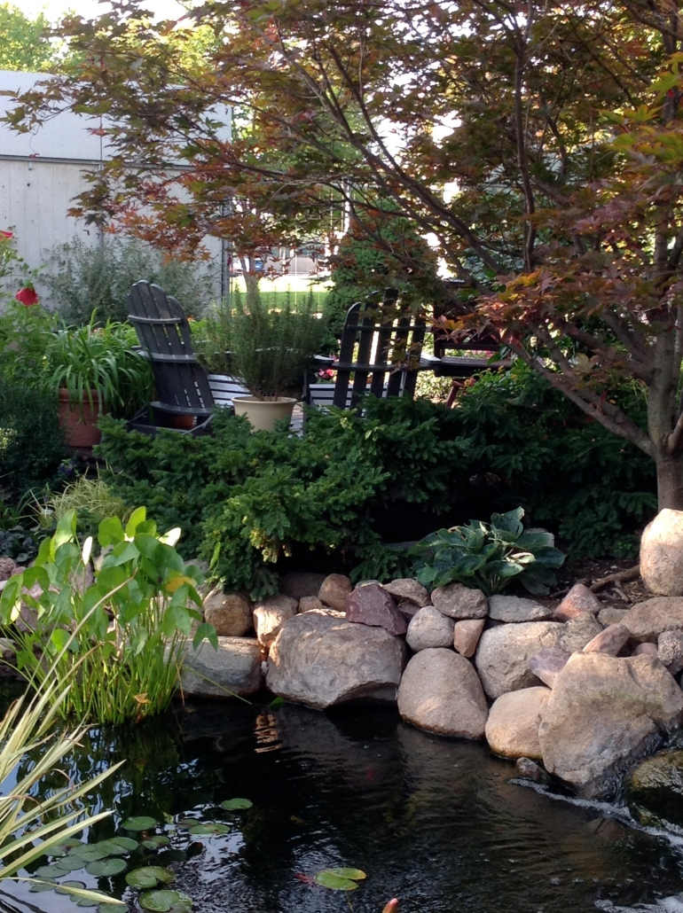 We are calling it--The Pond Project