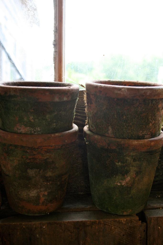 Mossy Pots